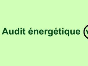 En 2019, ne dépensez pas pour un nouvel audit énergétique : Valorisez le précédent !